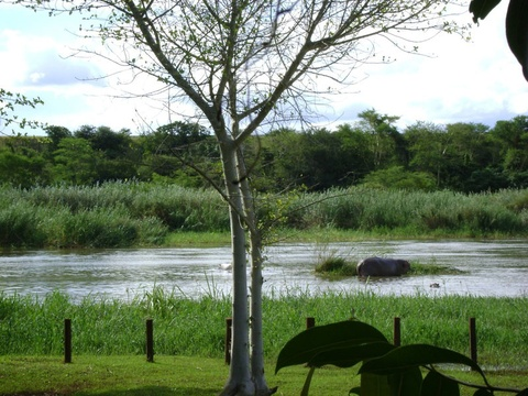 Komatipoort Self-Catering Cottage Crocodile River