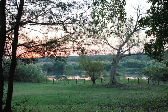 Orchards Farm Komatipoort Crocodile River View